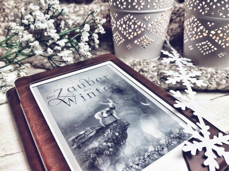 Der Zauber des Winters4