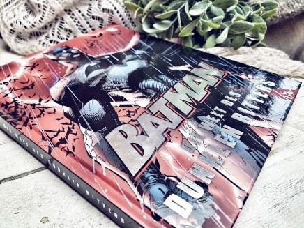 Batman Die Welt des dunklen Ritters