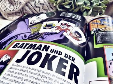 Batman Die Welt des dunklen Ritters7