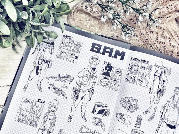 SAM 2c